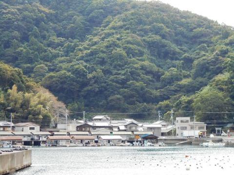 41番への道(宇和島漁村)