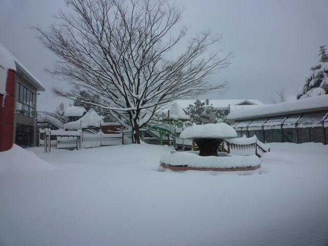 cec822f7f8d06 幼稚園も臨時休園で、ご迷惑をおかけしております。 たった今、明日も臨時休園することにしました。 敦賀市内の小中学校もすべて休校にしたようですね。