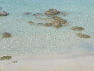 サムイ島は海のベストシーズン05