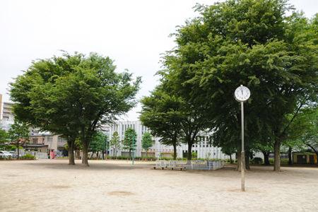 77963_14-01kawaguchinamiki