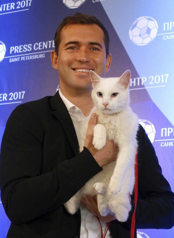 【動画】コンフェデ杯に「予想猫」登場!その名はアキレス