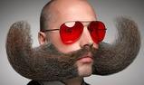 Header-Beards