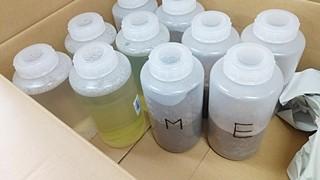 ナガエツルノゲイトウ 試験後水質土壌検査