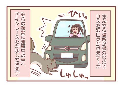 リスドライブs