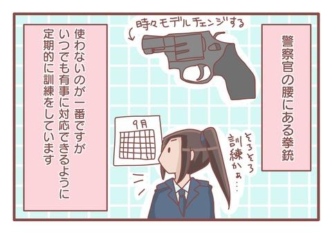拳銃訓練s