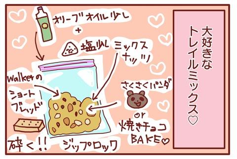 富士山準備3