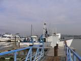 DVCの船