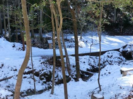 CIMG6771 雪の三叉路