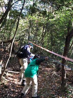 自分の木測量2
