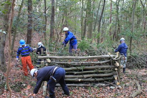 IMG_2708ベッドへの木々整理作業