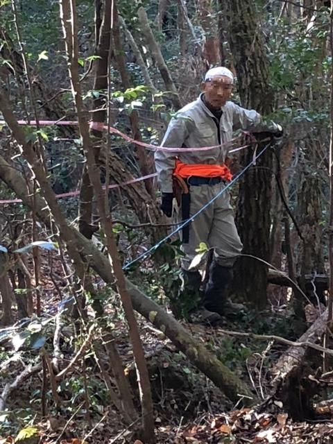 自分の木測量m