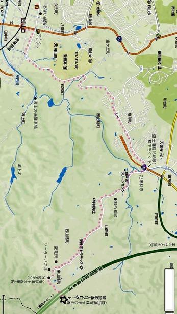 観桜会地図縦