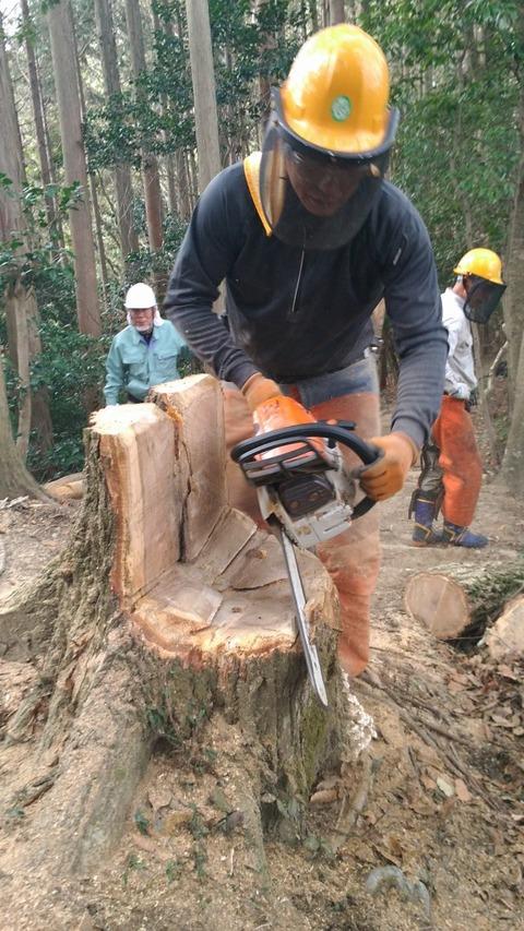 枯死木伐採06 - コピー