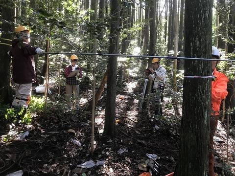 IMG_2326 20201020人工林