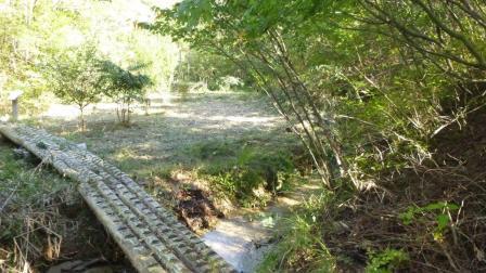 P1040041湿地葦刈終了
