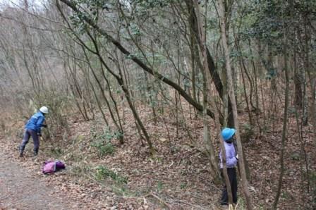 IMG_3304雑木林整備