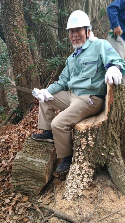 枯死木伐採07 - コピー