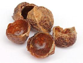 nuts300