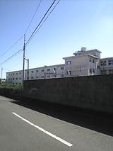 aaf7a325.jpg