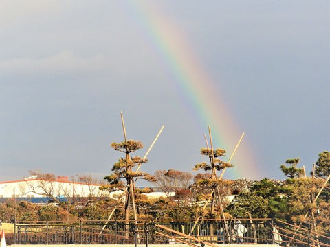 20181103虹