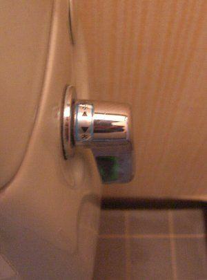 toilet lever.jpg