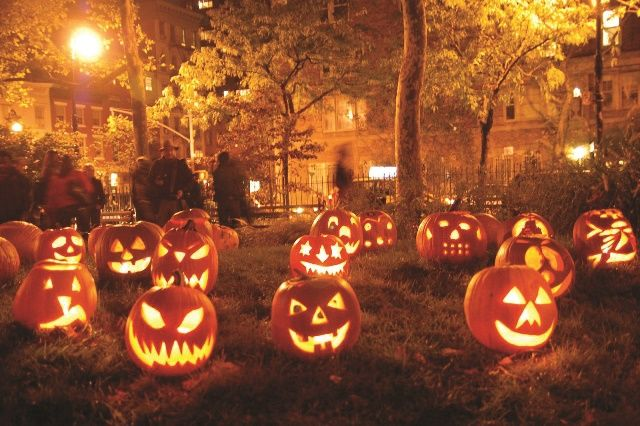 pumpkin写真1