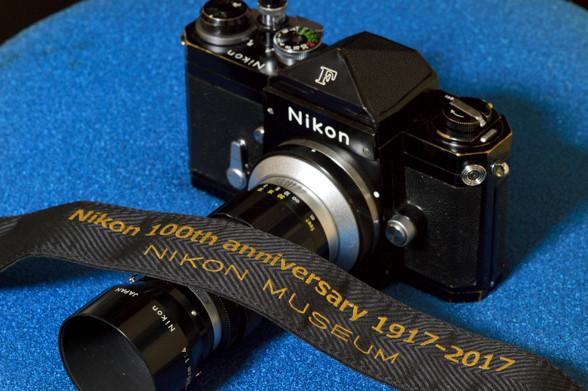 黒いカメラと 夏の名残のポーチュラカ