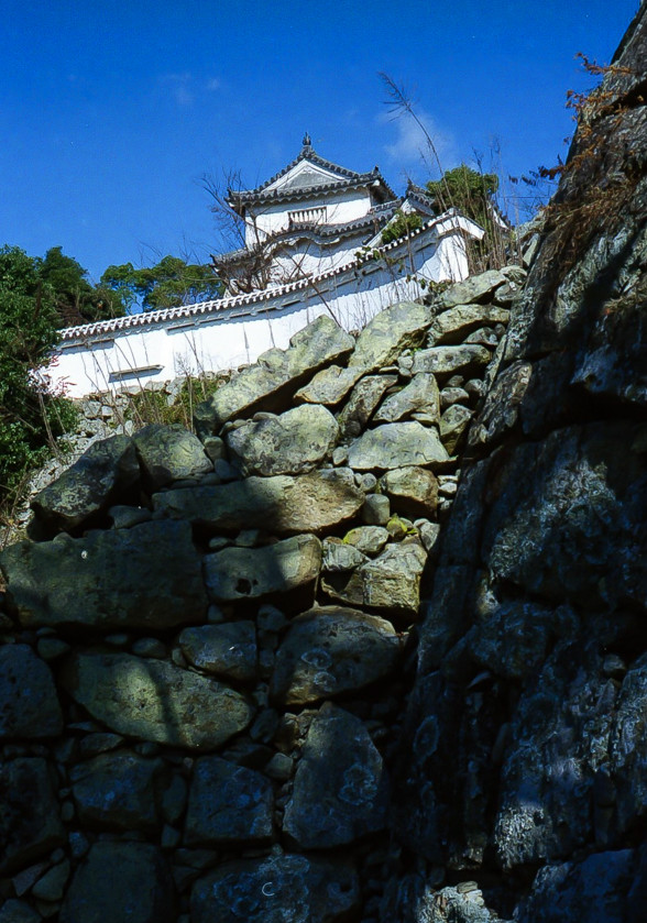 石垣を見上げる