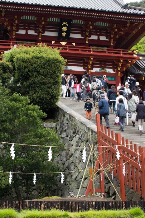 鶴岡八幡宮と銀杏