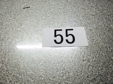 bingoday8 (3)