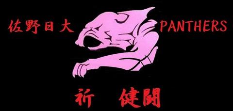 PANTHERSロゴ単独2