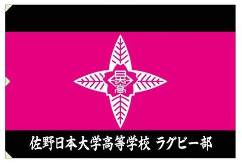 佐野日大部旗