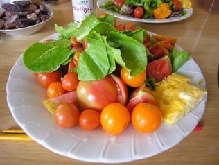 宮古島滞在期。宮古島の有機野菜の味。