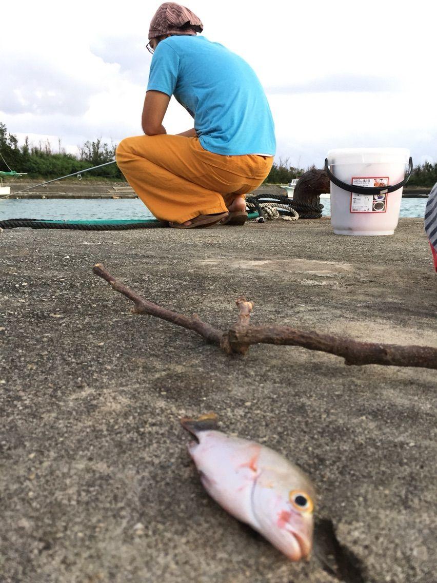 宮古島を釣る!