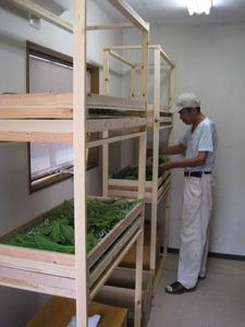 二階建て住居