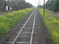 オレンジ鉄道沿線