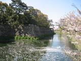 院内城のお堀