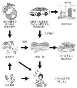 肥料の課題(硫黄の連鎖)