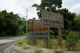 奄美の田舎道