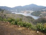 嘉瀬川ダム20110307