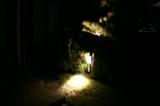 LED街灯2