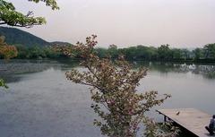 19920426京都106
