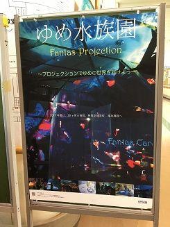 夢水族館 (13)