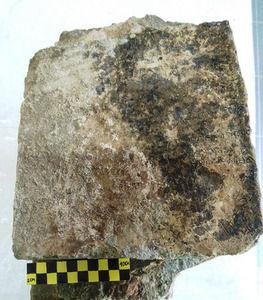 叙事詩「オデュッセイア」刻んだ3世紀の粘土板発見…ギリシャ最古の記録か