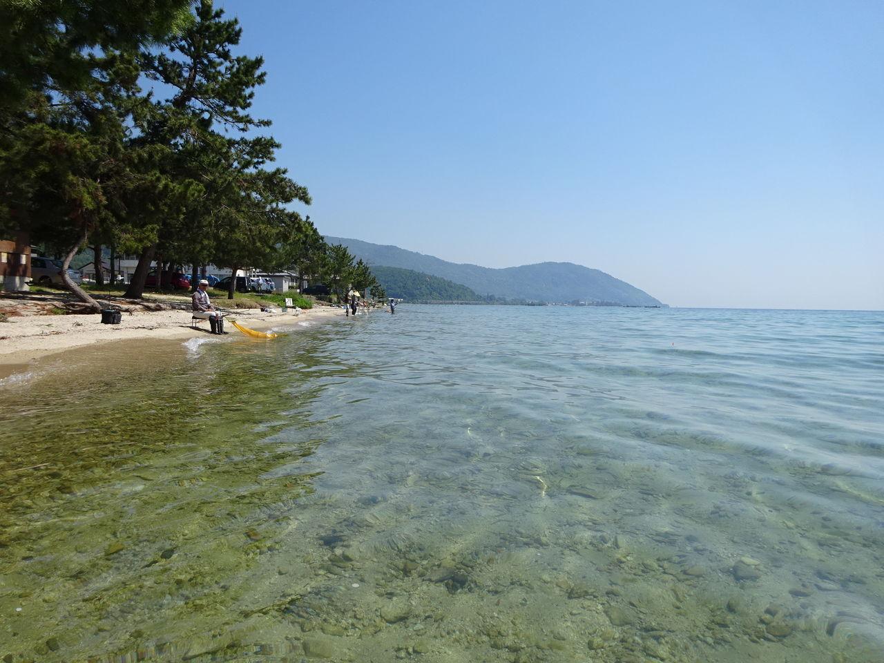 2020 鮎 釣り 琵琶湖 小