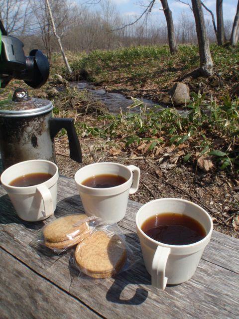 樹液コーヒー
