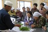 山菜料理講習