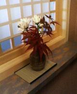 花の間の花