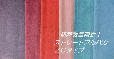 ZC集合 - コピー