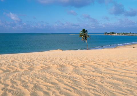 sand-beach-of-paracuru-ceara-brazil-1189003